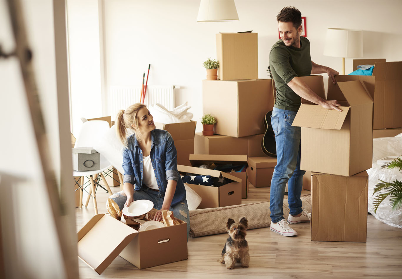 Moving With Your Pet | Greystar