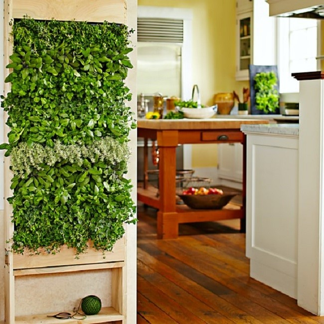 green plants air filtration