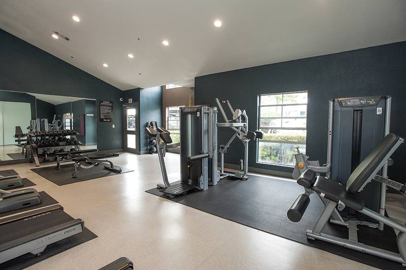 fitness center at Vue at 3600 Apartments