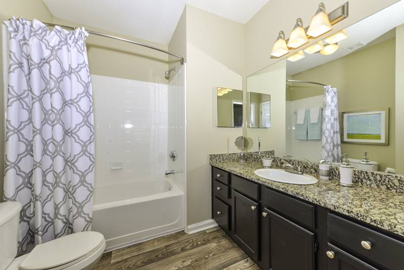 bathroom at Duck Pond at Johns Creek Apartments