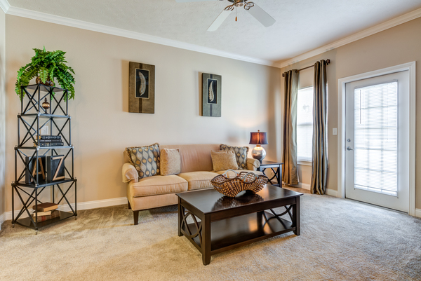 living room at Copper Chase at Stones Crossing Apartments