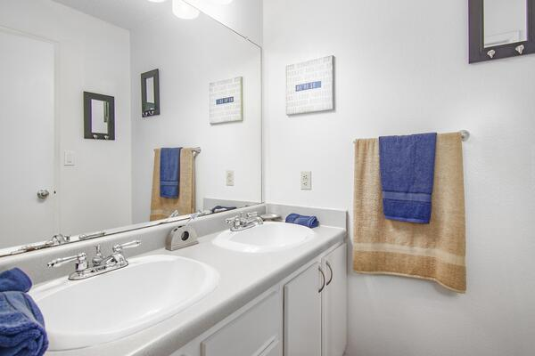 bathroom at The Trails at Wolf Pen Apartments