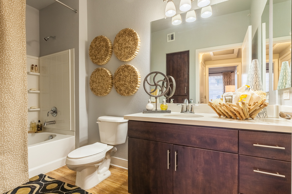 bathroom at SkyStone Apartments