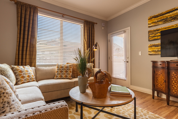 living room at SkyStone Apartments