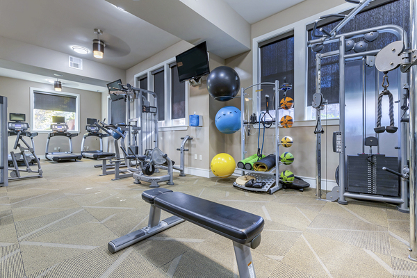 fitness center at Metro 808 Apartments