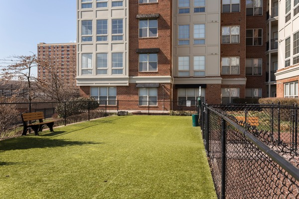 dog park at Plaza Square Apartments