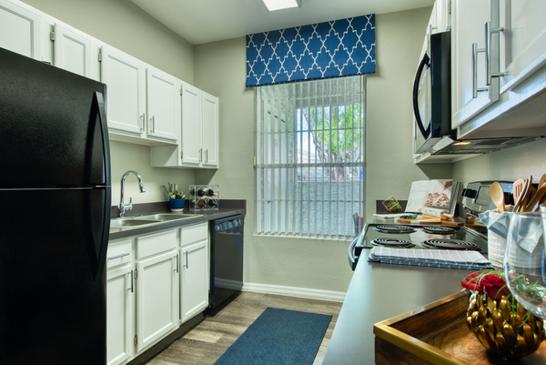 kitchen at Envision Apartments