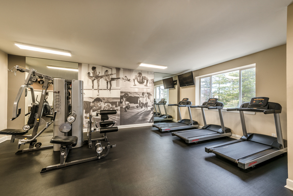 fitness center at Avana Northlake Apartments