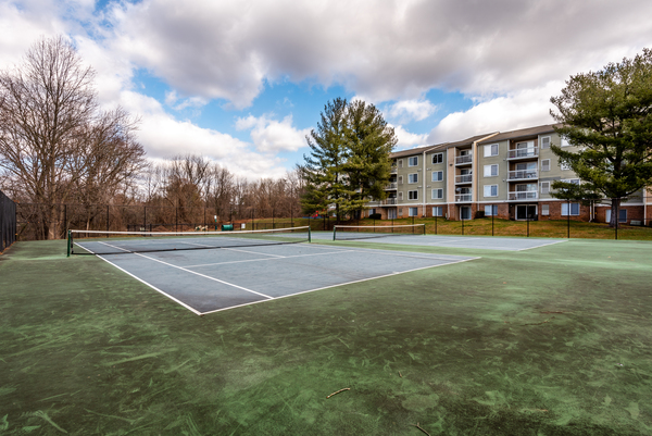 sport court at Avana Northlake Apartments