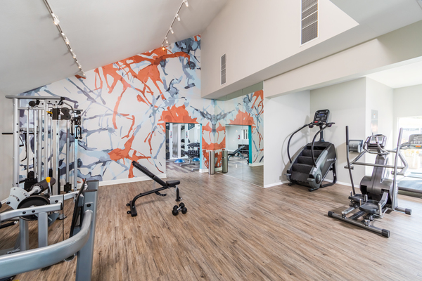 fitness center at Avana Springs Apartments