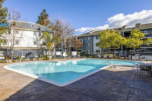 pool at Avana Almaden Apartments