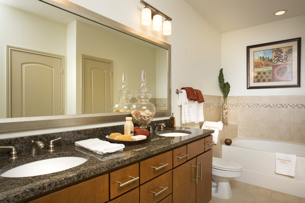 bathroom at Braeswood Place Apartments
