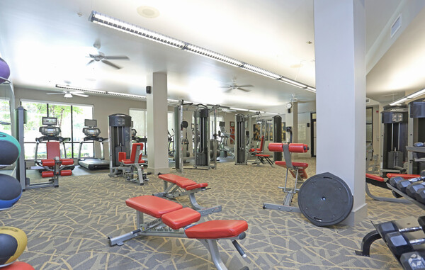 fitness center at Braeswood Place Apartments
