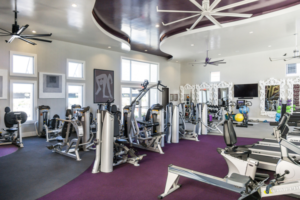 fitness center at Elysian at the District Apartments