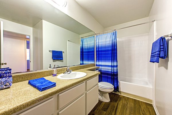 bathroom at Deerwood Apartments