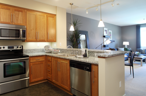 kitchen at Elements Apartments