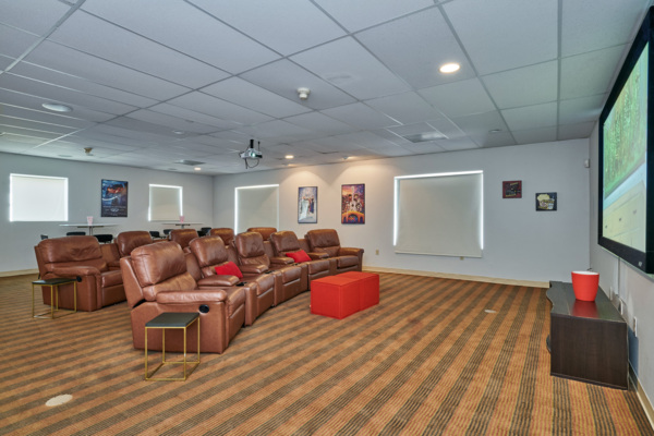 theater at Novi at Lowry Apartments