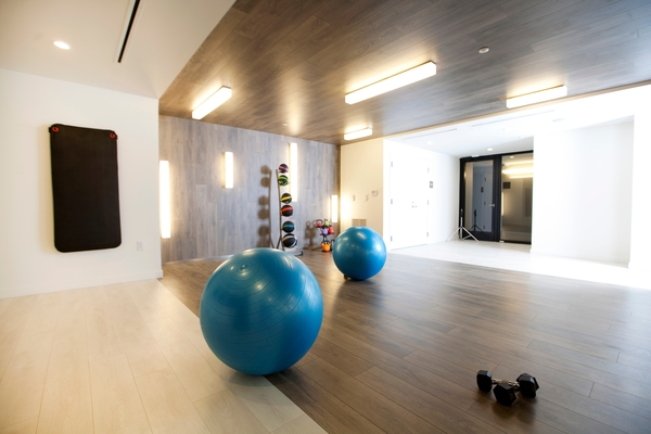 fitness center at The Louis Apartments