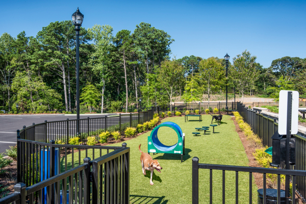 dog park at View at Woodstock Apartments