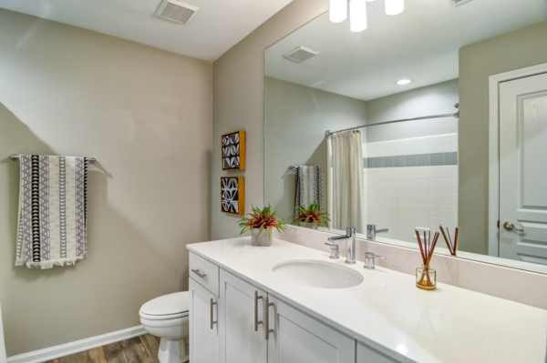 bathroom at Avana Cheshire Bridge Apartments