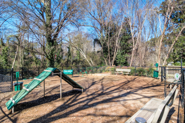 dog park at Avana Cheshire Bridge Apartments