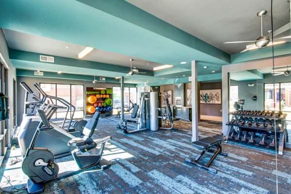 fitness center at Scenic at River East Apartments