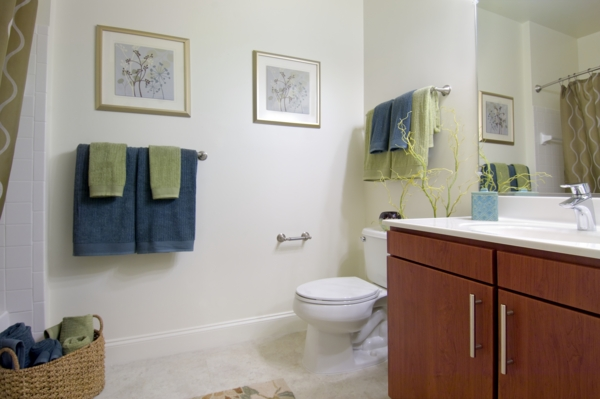 bathroom at The Preserve at Cohasset Apartments