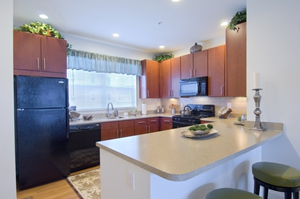 kitchen at The Preserve at Cohasset Apartments