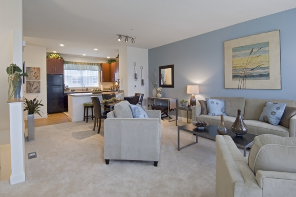 living room at The Preserve at Cohasset Apartments