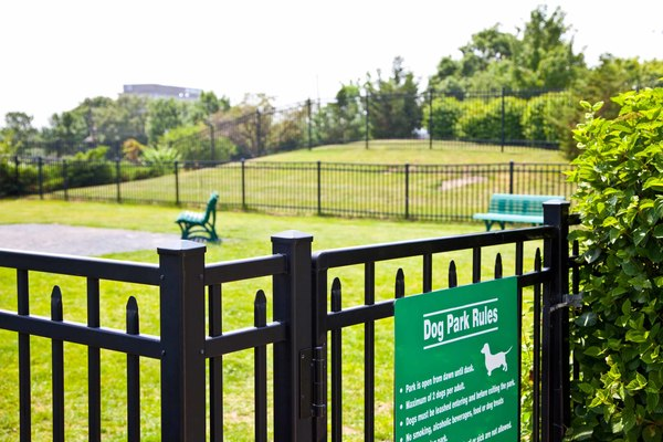dog park at Burrough's Mill Apartments