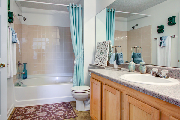 bathroom at The Promenade at Boiling Springs Apartments