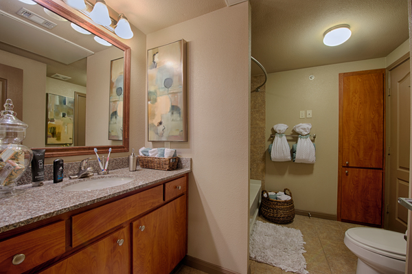 bathroom at Montage at Cinco Ranch Apartments
