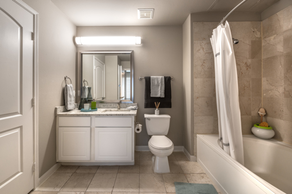 bathroom at SKYE of Turtle Creek Apartments