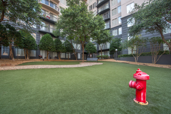 dog park at SKYE of Turtle Creek Apartments