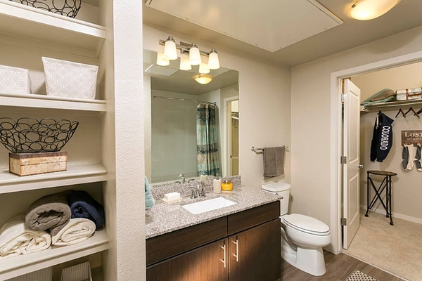 bathroom at HiLine at Littleton Commons Apartments