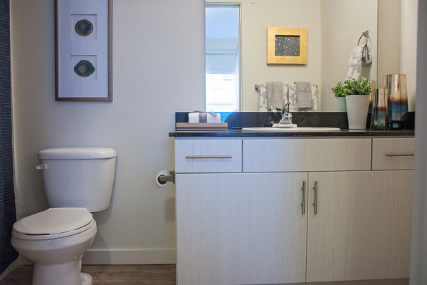 bathroom at Rockledge at Quarry Bend Apartments