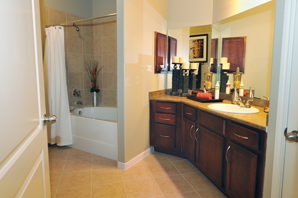 bathroom at Falls at Eagle Creek Apartments