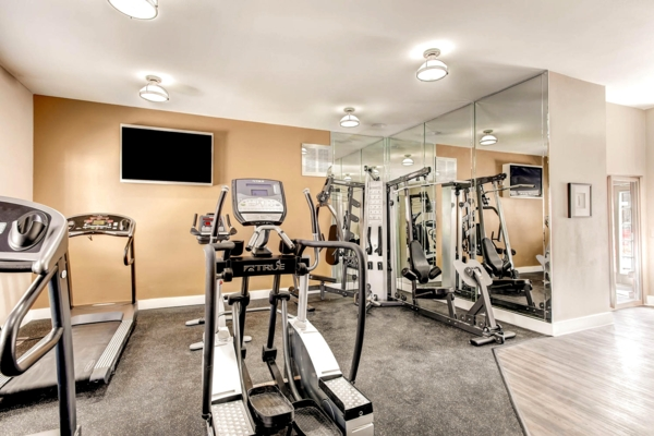 fitness center at Terra Vista at the Park Apartments