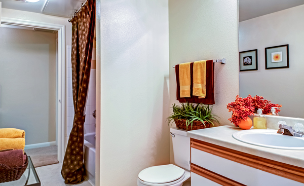 bathroom at Magnolia Creek Apartments