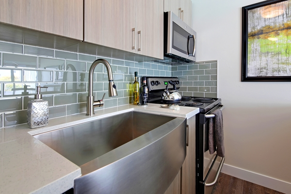 kitchen at Avana on the Lake Apartments