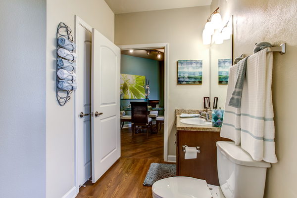 bathroom at Town Center at Lakeside Village Apartments