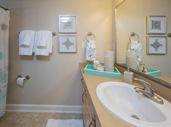 bathroom at Ellicott Grove Apartments
