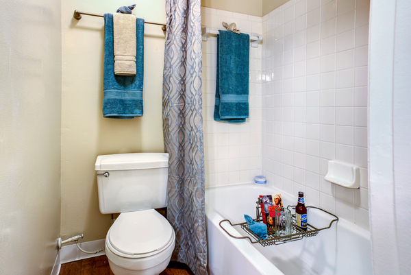 bathroom at Lakeshore at Altamonte Springs Apartments