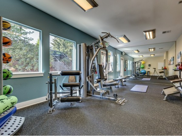 fitness center at Onyx Apartments