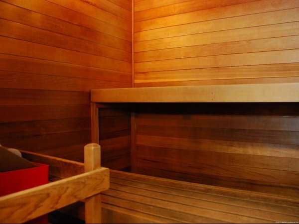 sauna at Onyx Apartments