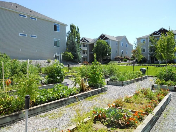 garden area at Hilby Station Apartments