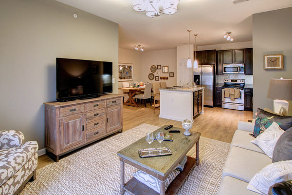 living room at Alexander Village Apartments
