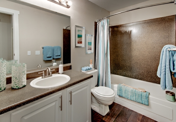 bathroom at StonePointe Apartments