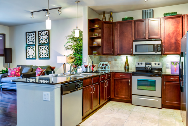 kitchen at The Westheimer Apartments