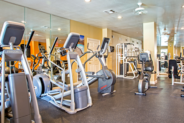 fitness center at Plaza at Westchase Apartments